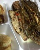Fritada de pescado bahamense Imágenes de archivo libres de regalías