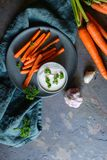 Fritadas de la zanahoria con la inmersión de la crema agria y del ajo imagen de archivo
