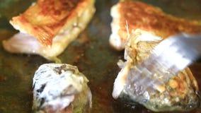 Fritando partes de peixes vídeos de arquivo