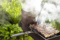 Frite a carne foto de stock