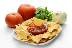 Frites et Salsa Images libres de droits
