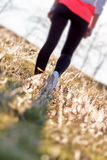 Fritids- går i natur förbättrar din hälsa Royaltyfria Bilder