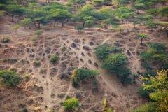 Fritids- område nära Pushkar, Indien med att korsa som är offroad Arkivbild