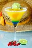 fritids- sommar för drink Royaltyfria Foton