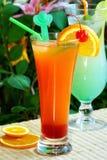 fritids- sommar för drink Arkivfoton