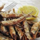 Fritos espagnols de boquerones, anchois frits typiques en Espagne Photos libres de droits