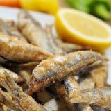 Fritos espagnols de boquerones, anchois frits typiques en Espagne Photo stock