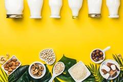Fritt mejeri mjölkar ersättningdrinkar och ingredienser arkivfoto