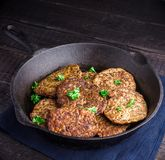 Fritters from a liver. Royalty Free Stock Photography