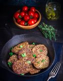 Fritters from a liver. Stock Image