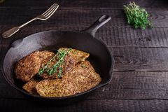 Fritters from a liver. Royalty Free Stock Image