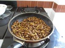 Frittierte Insekten für Abendessen in einer Wanne, Thailand lizenzfreies stockfoto