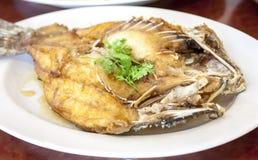 Frittierte Rotbarschfische lizenzfreies stockbild