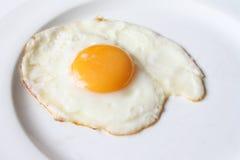 Fritto 1 uovo Fotografie Stock