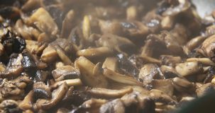 Frittura dei funghi in pentola stock footage