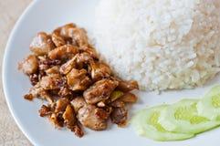 Frittura del pollo ed alimento del riso Fotografie Stock Libere da Diritti