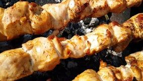 Frittura di kebab nel movimento lento appetitoso della natura archivi video