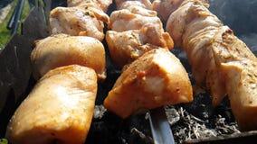 Frittura di kebab nel movimento lento della natura archivi video