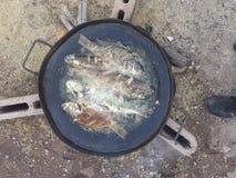 Frittura di pesce Fotografia Stock