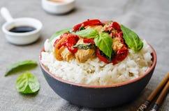 Frittura di scalpore del pollo del pepe del basilico con riso Fotografie Stock Libere da Diritti