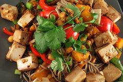 Friture végétarienne de stir de gingembre de tofu Image libre de droits