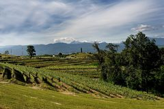Friuli italy do bernarda de Rocca Imagem de Stock Royalty Free
