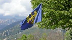 The Friuli-Venezia Giulia flag stock footage
