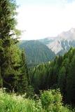 Friulian Dolomites Stock Image