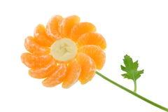 friut цветка Стоковое Изображение