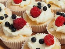 Friut-Muffins lizenzfreies stockfoto