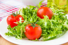Frizzy crisp lettuce with cherry tomatoes Royalty Free Stock Images