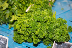 Frizzy parsley in a transport box at the weekly market Stock Photos