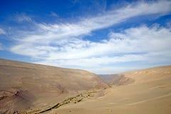 Frodig dal i den Atacama öknen, Chile Fotografering för Bildbyråer