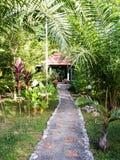 Frodig grön tropisk reträttbungallow, Khao Sok sjö Arkivfoton