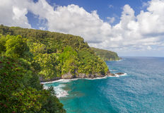 Frodig Hana kustlinje i Maui Royaltyfri Foto