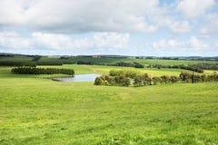 Frodig jordbruksmark, sydliga Victoria, Australien Arkivfoto