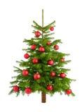 Frodig julgran med röda struntsaker Arkivfoton