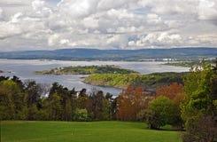 Frodig lövverk på våren i Oslofjorden, Norge Arkivbild
