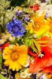 Frodig sommarbukett av vildblommor med vallmo, tusenskönor, blåklintcloseup arkivbild
