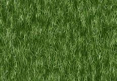 Frodig textur för grönt gräs tapetmodell Arkivbild
