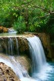 frodig vattenfall royaltyfria foton