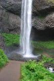 frodig vattenfall Royaltyfri Foto