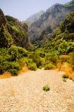 Frodig vegetation för lös dal Megalo Seitani, Samos Arkivbild