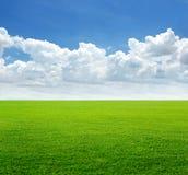 Frodigt gräsfält och blå himmel med molnbakgrund royaltyfri foto