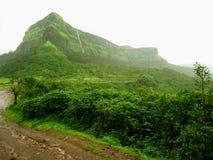 Frodigt grönt berg och djungel royaltyfria bilder