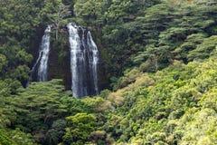 Frodigt tropiskt djungellandskap med den högväxta vattenfallet på ön Royaltyfri Bild