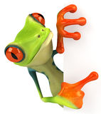 Frog. Cute little frog , 3D generated royalty free illustration