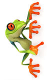 Frog. Cute little frog , 3D generated Royalty Free Stock Photography
