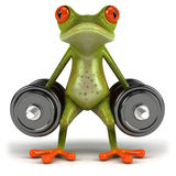 Frog. Cute little frog, 3D generated Royalty Free Stock Photography