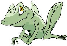 Frog. A Funny Frog Charater Royalty Free Stock Images